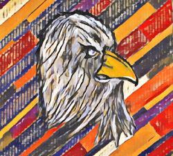 L'aigle confiné #9