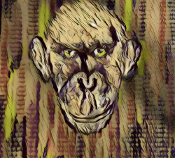 Le-singe-confiné #18