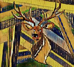 Le cerf confiné #8