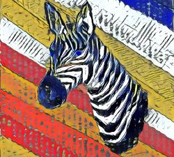 Le zebre confiné #6