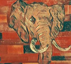 L'éléphant confiné #11